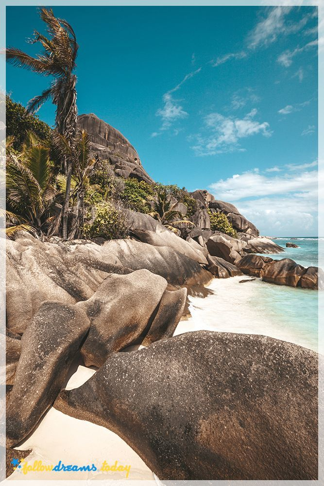 Beautiful shoreline of large boulders and palm trees along a beach and cyan colored water