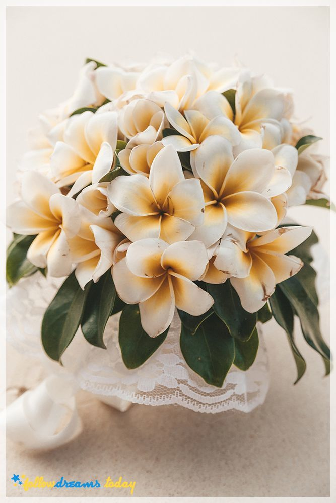 Wedding bouquet of frangipani flowers